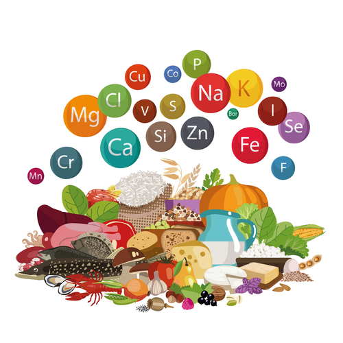 macronutrients diet reviewing