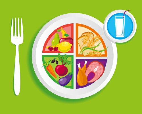 Vector illustration of the MyPlate nutrition guide